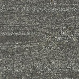 SS-303 古木紋